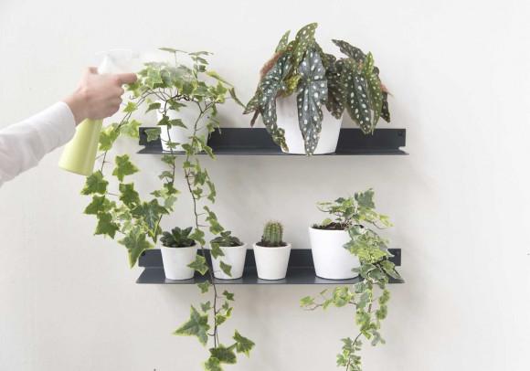 Étagère murale pour plantes L45 cm - Lot de 2