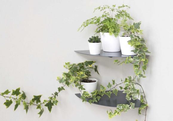Porta piante L24 cm - Set di 2
