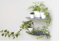 Floating plant shelf L36 cm - Alu - Set of 2