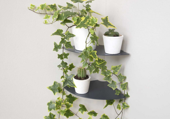 Porta piante L36 cm - Set di 2